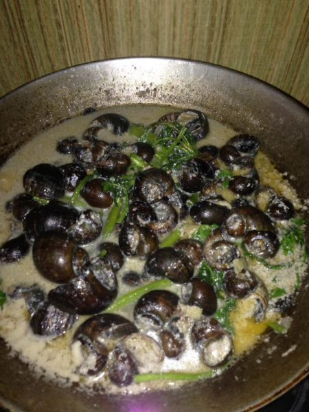 Ginataang Kuhol (Escargot in Coconut Milk)