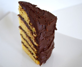 Chocolate and Vanilla Layered Cake