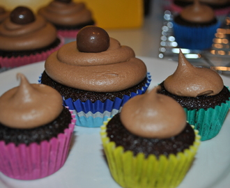 Chocolate Fudge Cupcakes with Chocolate Sour Cream Icing