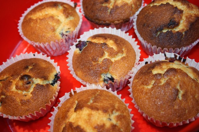Queen Cakes / Blueberry Muffins