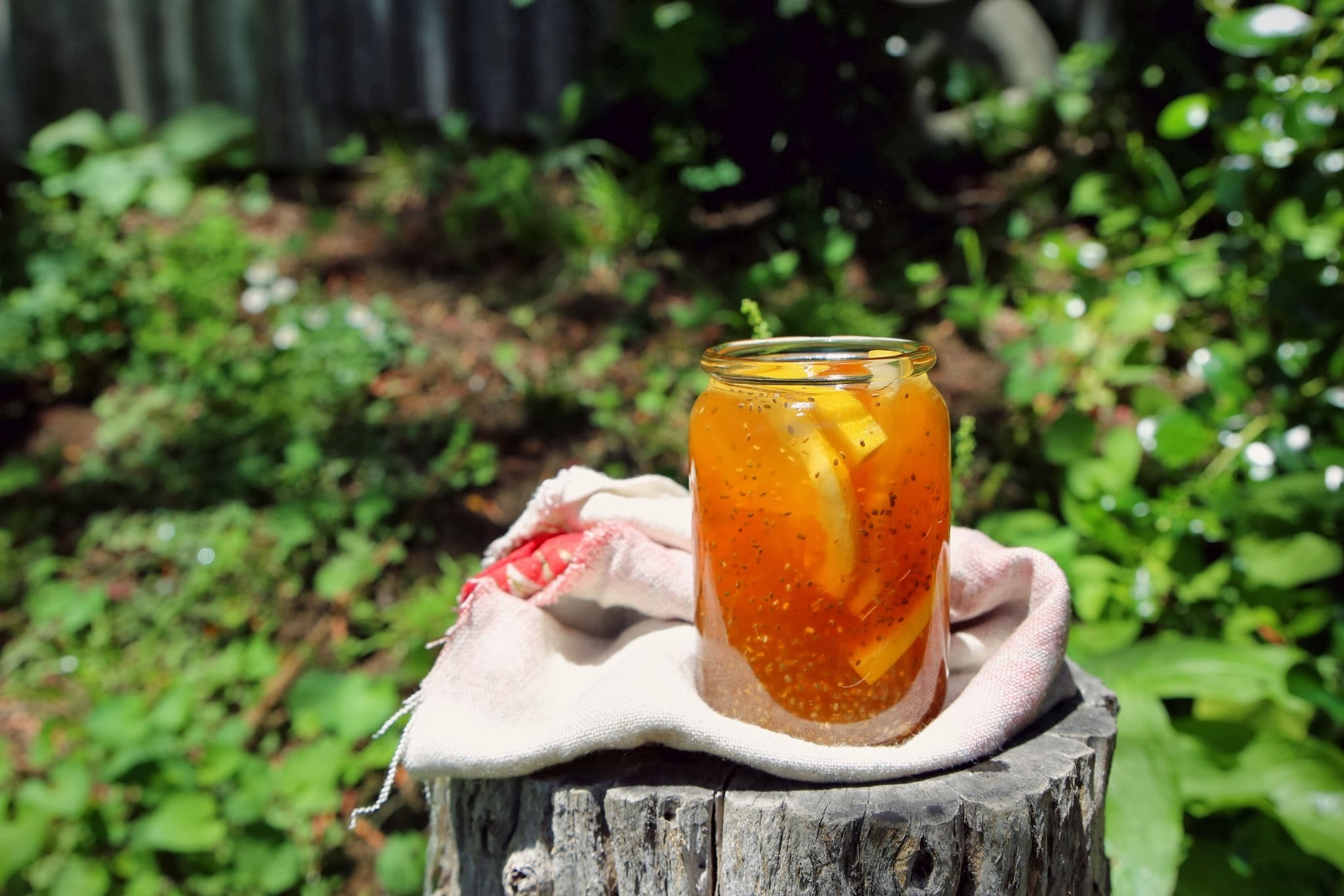 ICED ROOIBOS AND HONEY TEA WITH CHIA SEEDS AND A HINT OF LEMON