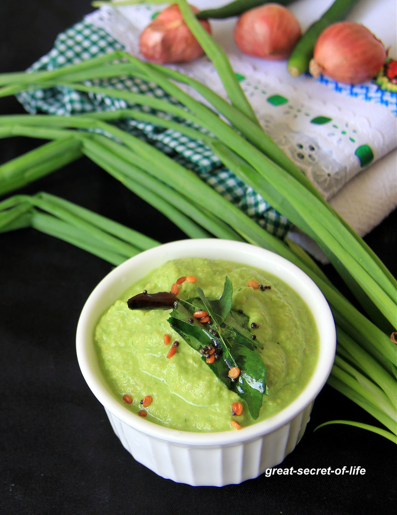 Spring onion Chutney - Spring onion Dip - Simple side dish for idli, dosa or paratha