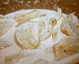 Fennel in cream sauce