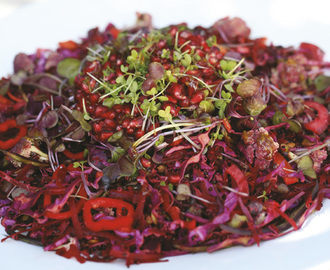 Raw Energy Salad Recipe