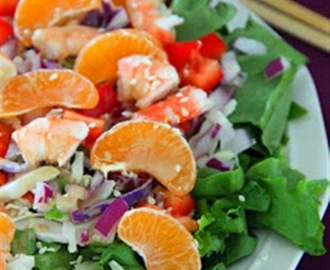 Asian Inspired Prawn Salad With Sesame Dressing