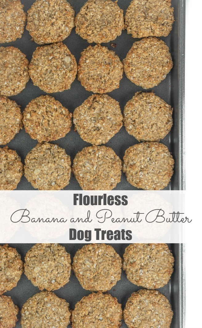 Flourless Banana and Peanut Butter Dog Treats