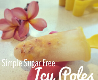 Simple Sugar Free Icy Poles