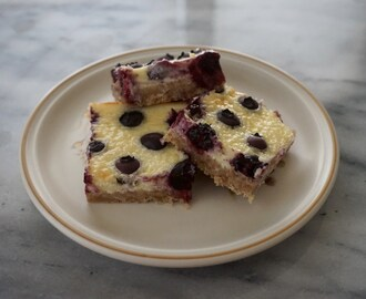 Coconut Blueberry Cheesecake Bars