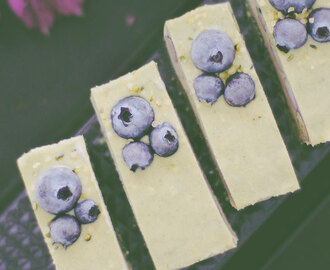 Raw Blueberry Spirulina Cheesecake Slice