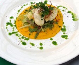 Tasmanian Crayfish, ginger carrot puree, parsley oil and lime dressed salad