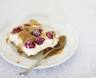 Raspberry ice cream slice with butterscotch syrup
