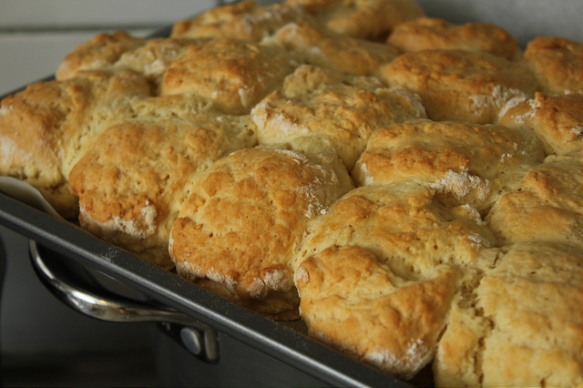 Cheat Scones – Only three ingredients!