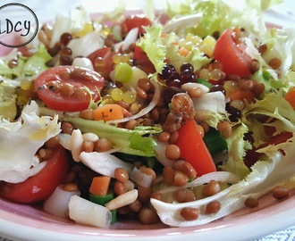 ENSALADA DE LENTEJAS CON VERDURITAS/Lentils salad with vegetables