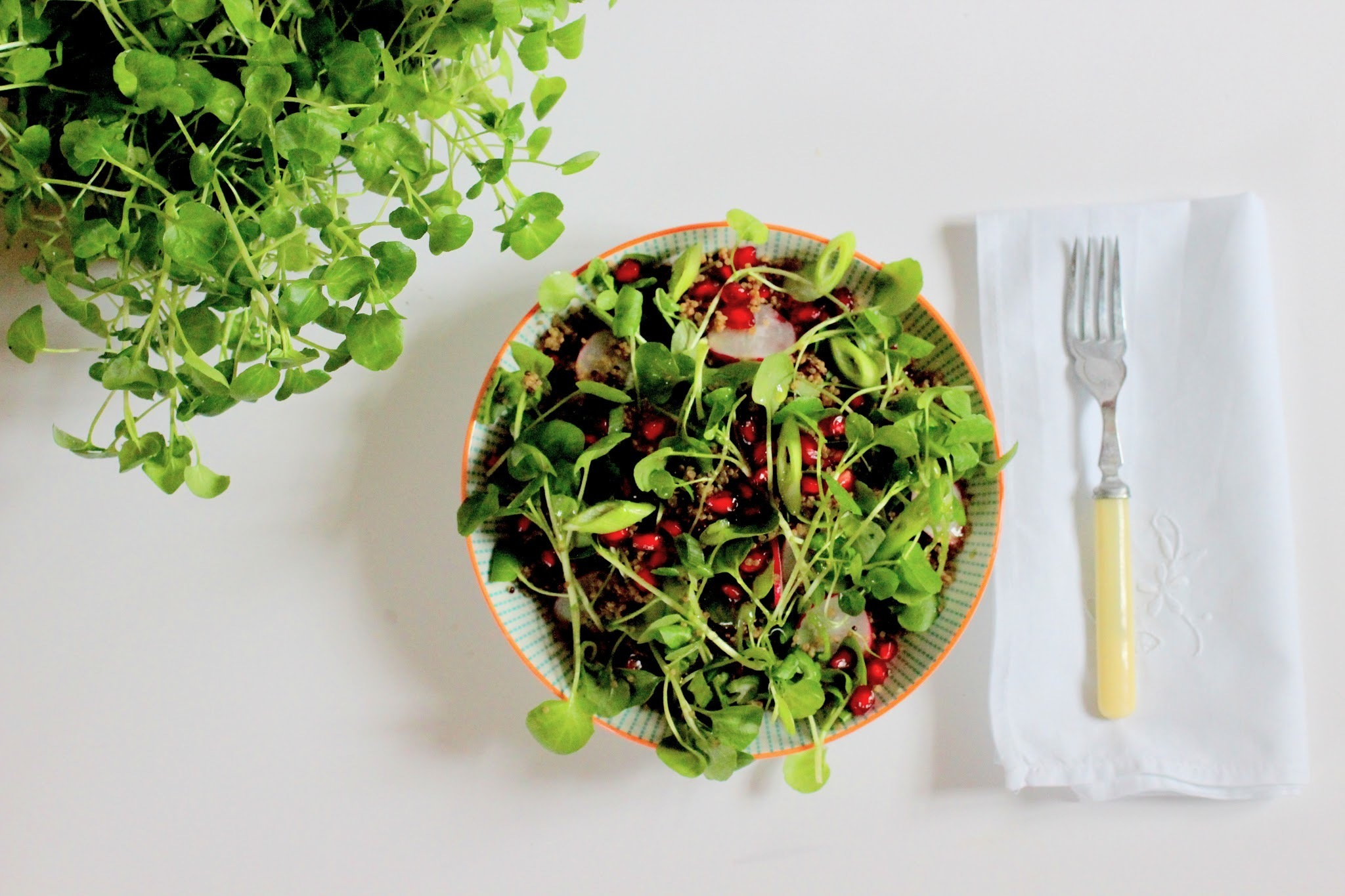 Watercress, quinoa and pomegranate salad