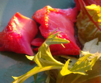Christmas Recipe! Beetroot Cured Trout