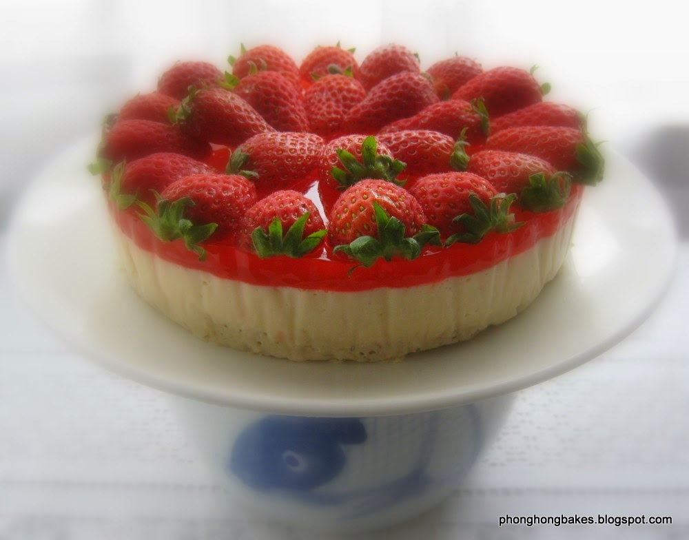 Yogurt Jelly Strawberry Cheesecake