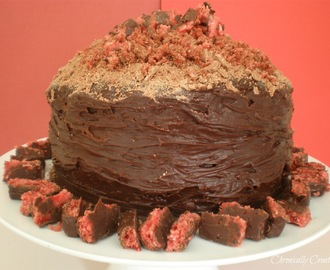 Double Layer Cherry Ripe Cake