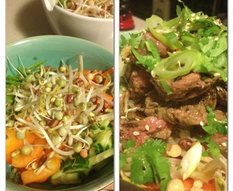 Beef or Chicken Vietnamese inspired Noodle Salad