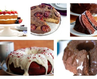 10 Cake Recipes You Have To Try