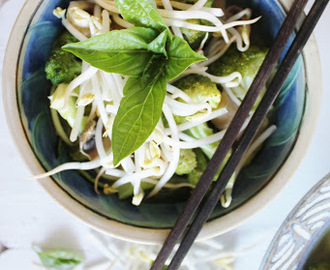 raw vegan phở with hoisin sauce, broccoli, mushrooms, basil & sprouts