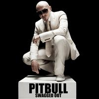 Pitbull;Swagged Out