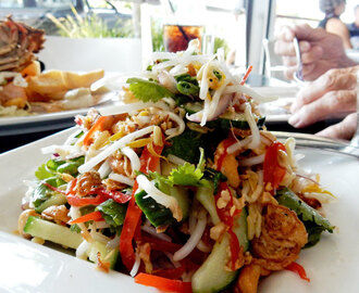 Fish on Parkyn and Vietnamese Salad