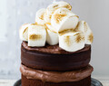 Thermomix Smores Chocolate Fudge Cake