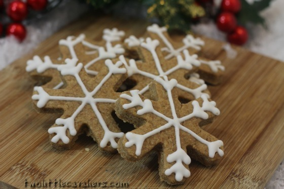 Pumpkin Peanut Butter Snowflake Dog Treats