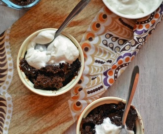 Chocolate Hot Fudge Pudding Cake