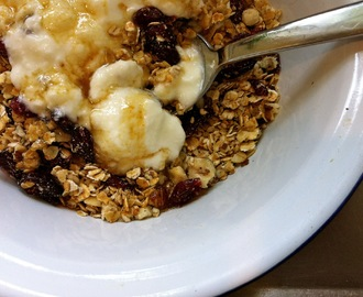 toasted coconut muesli with cranberries and hazlenuts
