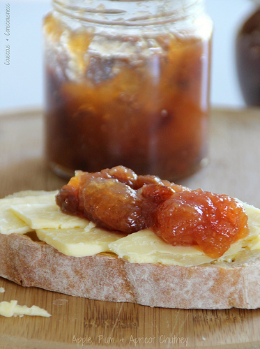 Apple, Plum & Apricot Chutney