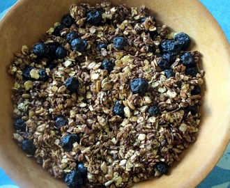 Chocolate, Coconut and Blueberry Muesli