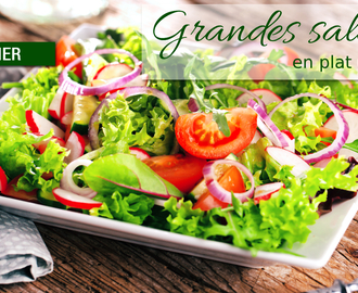 Dossier : Grandes salades version plat unique !