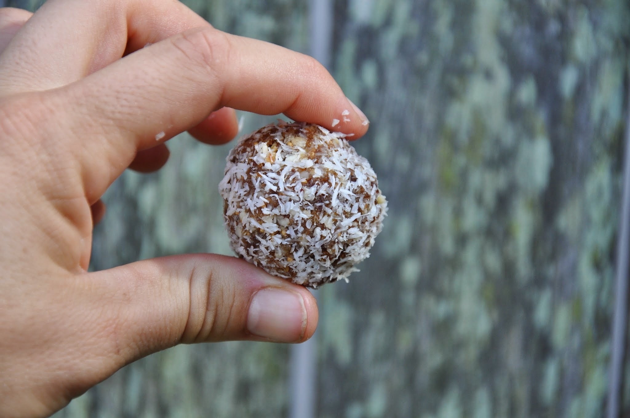 RECIPE: Going nuts for apricot treaty balls! (Only 4 ingredients in the thermomix)