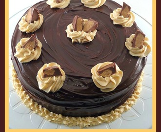 Special Occasion Chocolate Cake with Peanutbutter Frosting