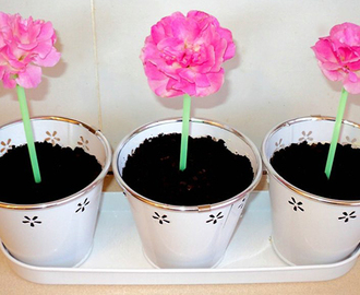 Oreo Cheesecake Flower Pots