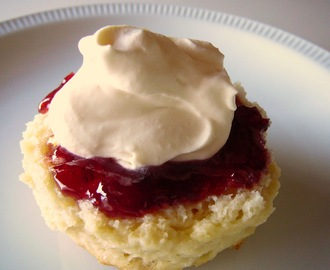 JANUARY, 2012 CHALLENGE: Back to Basics:Scones (a.k.a. Biscuits)