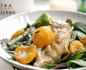 Apricot Chicken (AIP, Paleo) + Reflections on Thrombocytopenia