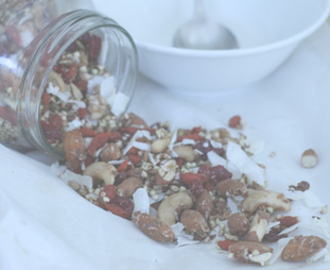 Food Remedy X Raw Sprouted Granola