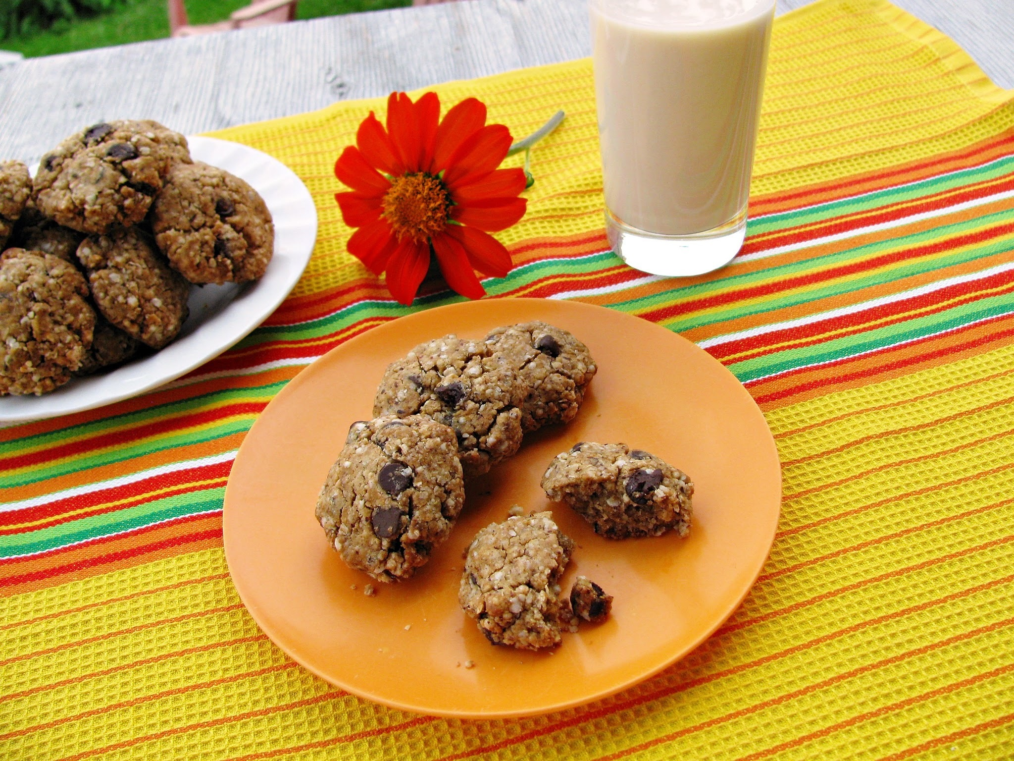 Gluten free quinoa and hazelnut chocolate chip cookies/Biscuits sans gluten au quinoa, noisettes et pépites de chocolat