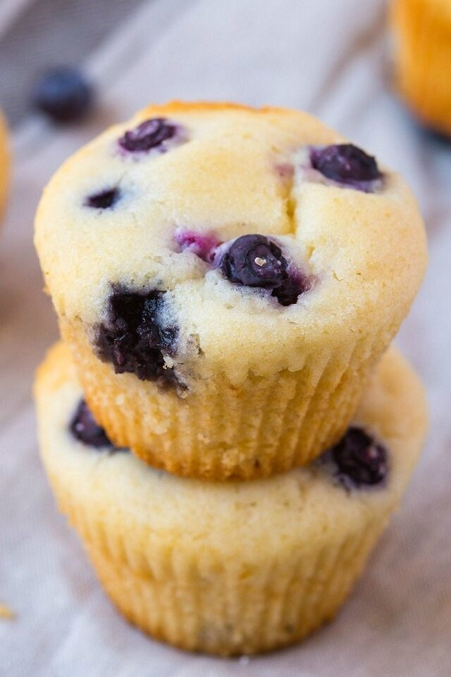 Fat Free Flourless Blueberry Muffins (Sugar Free, Vegan, Gluten Free)