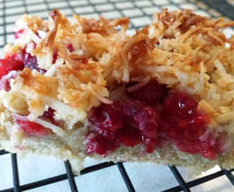 Raspberry Coconut Slice - Gluten Free, Real Raspberries and a Nutritious Lunchbox Filler!