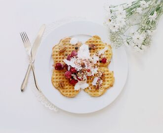 The Swedish Waffle Day - Gluten Free Protein Rich Waffles + 3 Other Healthy Waffle Recipes