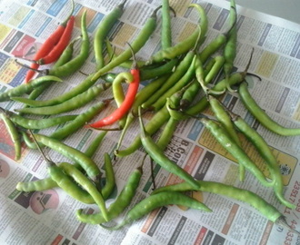 How to store green chilli |How to preserve green chillies for long time in fridge