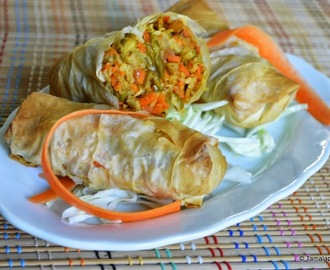Maggie Noodles-Vegetable Spring Rolls