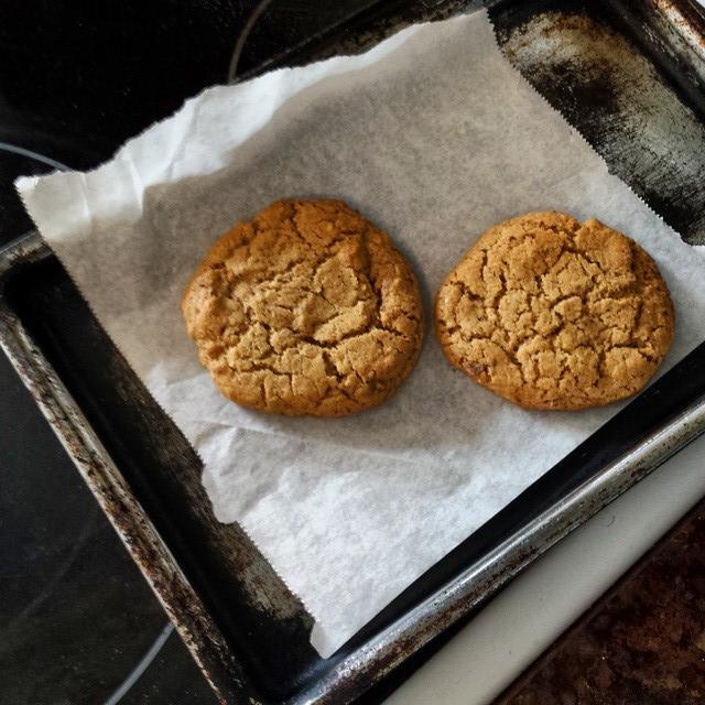 Gluten Free Protein Power Cookies