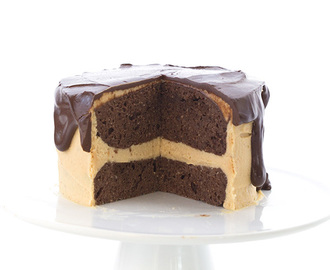 Mini Peanut Butter Chocolate Layer Cake