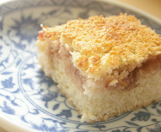 Coconut Jam Cake Bars