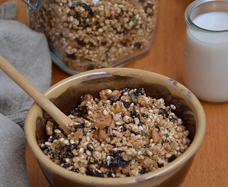 MUESLI CASERO CON ARÁNDANOS ROJOS, NUECES Y SIROPE DE ARCE – HOMEMADE MUESLI WITH CRANBERRIES, WALNUTS AND MAPLE SYRUP