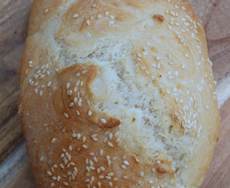 Why Was This No Knead Bread Made in a Bread Maker?